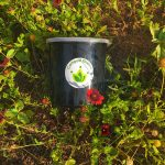 Compost Queens Countertop Compost Bin