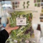 Talking Tree Farm - Lettuce Mix
