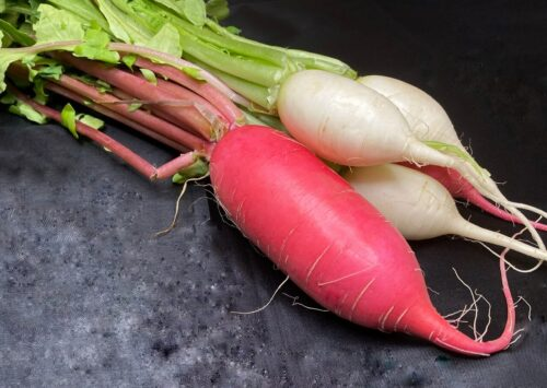 Green Bexar Farm - Daikon Radishes