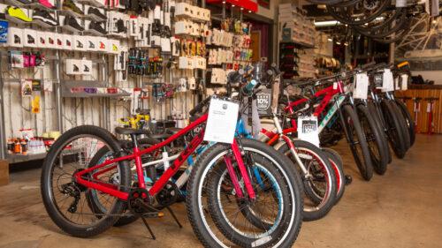 Bike World-Bikes-Interior