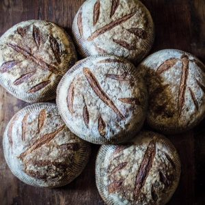 The Bread Box - Sourdough Boule