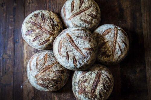 The Bread Box - Sourdough Boule