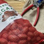 Pearl Farmers Market - 5lb Pecan Bag