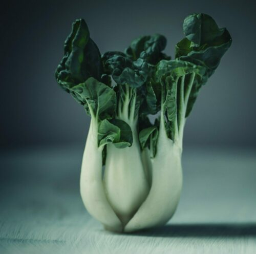 shallow focus photography of cabbage