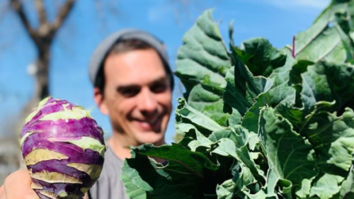 The Green Microstead: Produce